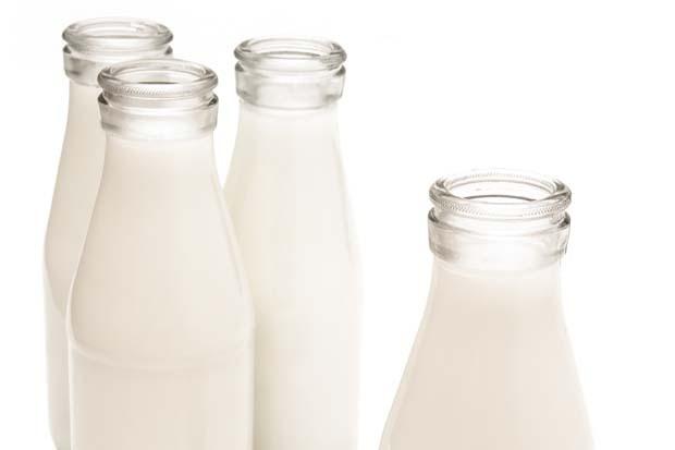 leite_nascecme_01