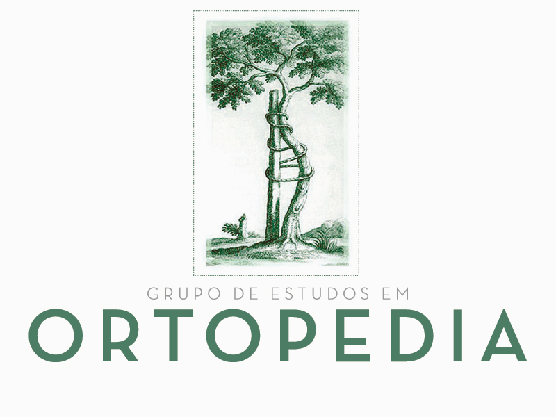 grupo-de-estudos-ortopedia-img